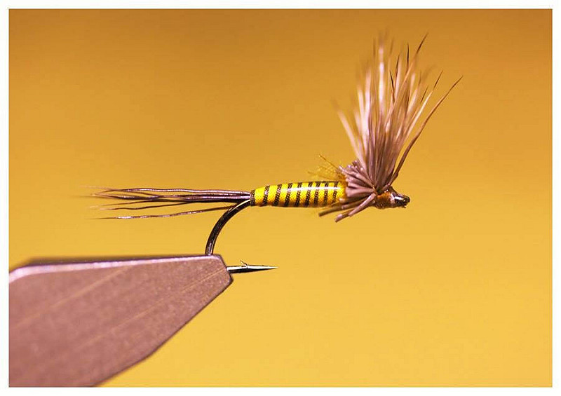 Light Cahill Fly Tying Hareline Synthetic Quill Body Wrap
